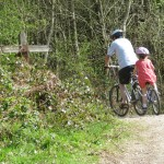 Wye Valley & Forest of Dean cycling