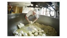 Teifi Cheese © COPYRIGHT KIRAN RIDLEY 2010