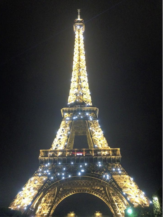 View of the Eiffel Tower during the light show